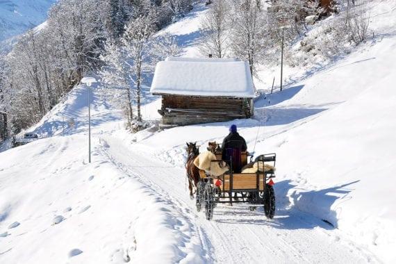 Pferdeschlittenfahrten in Forstau, Winterurlaub im Salzburger Land